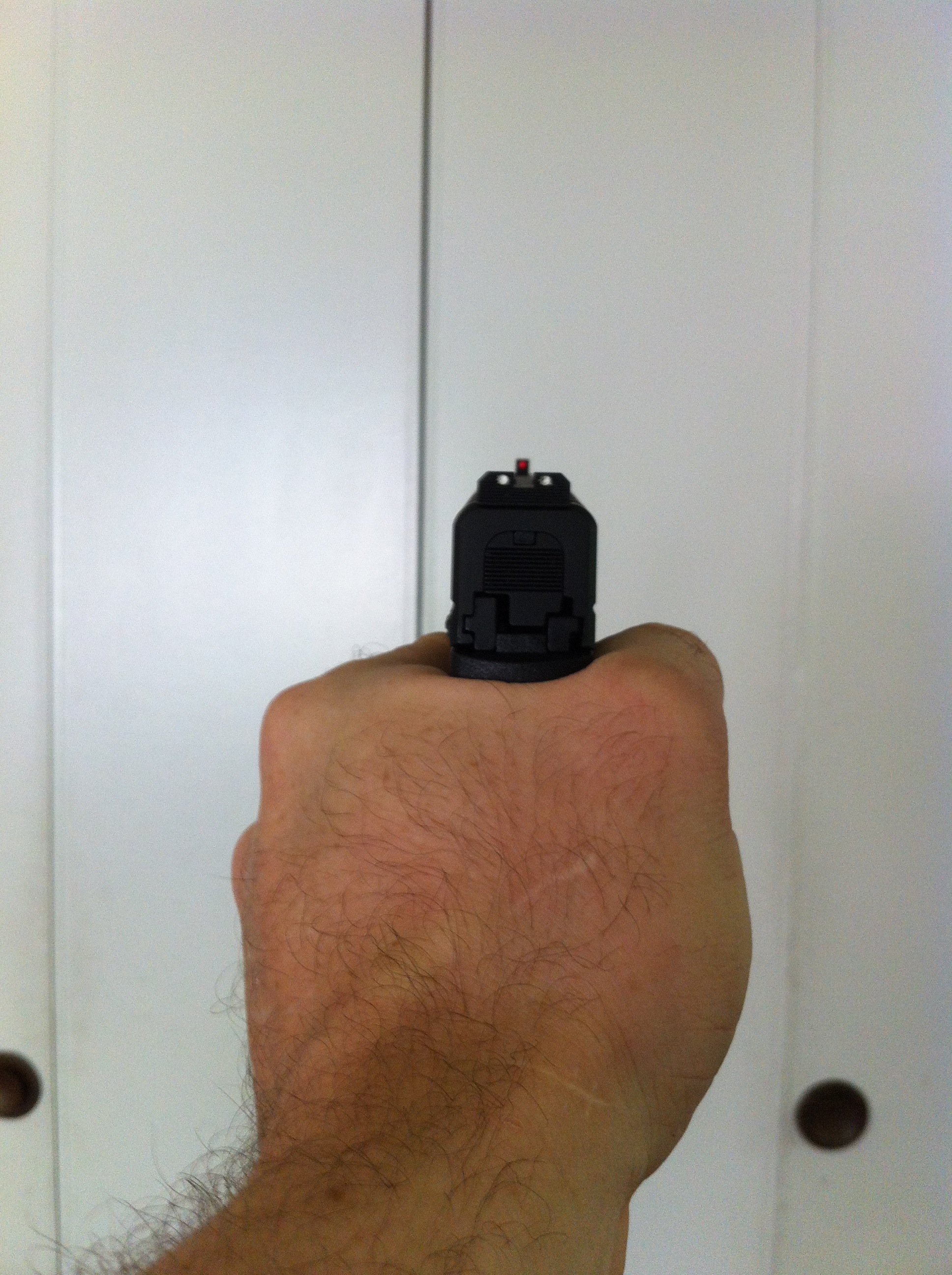 The XDS grip from the rear